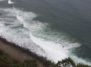 Coast Wave